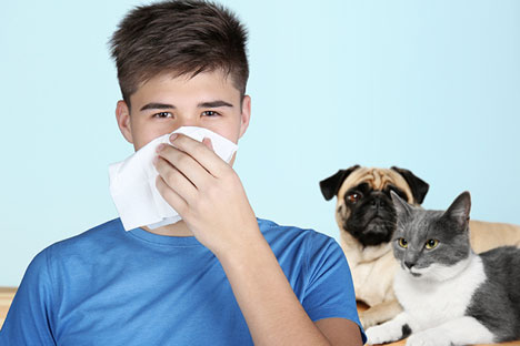 Is Your Pet Asthma and Allergy Friendly